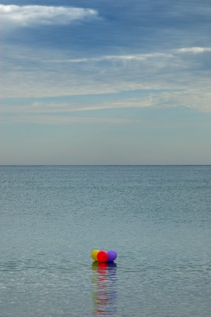 Playa de la garrofera. El Saler enero 2010