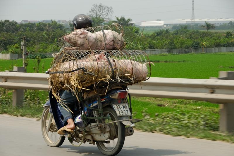 Transporte. Hanoi abril 2011