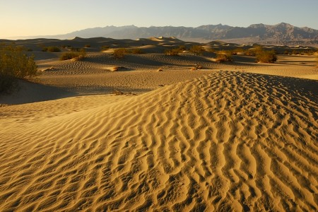 Mesquite Dunes. Death Valley junio 2012