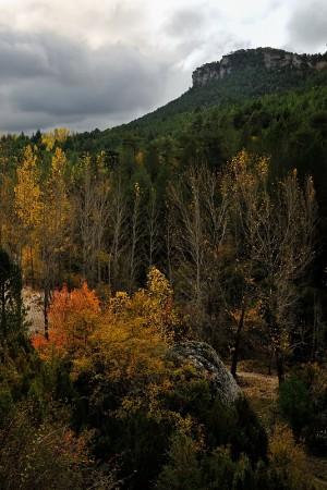 Alto Tajo. Octubre 2012