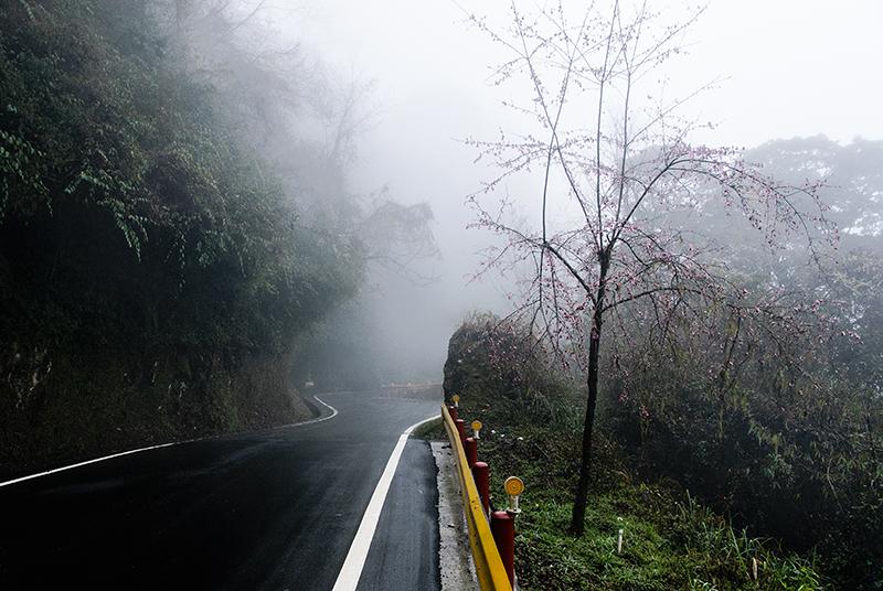 En las nubes. Taiwan febrero 2014