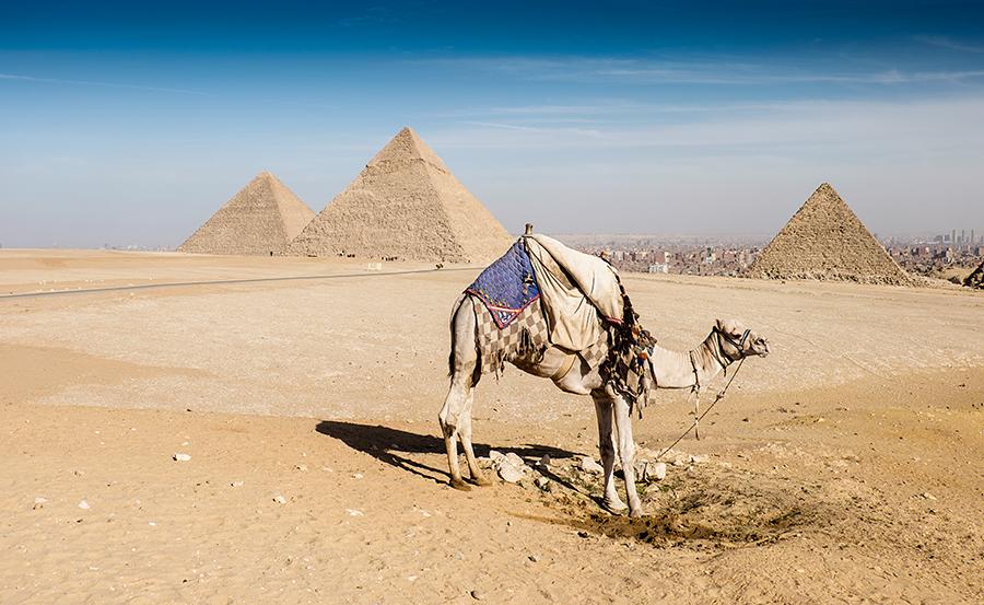 Pirámides de Giza, enero 2015