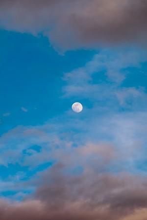 Luna en el Alto Tajo, mayo 2015