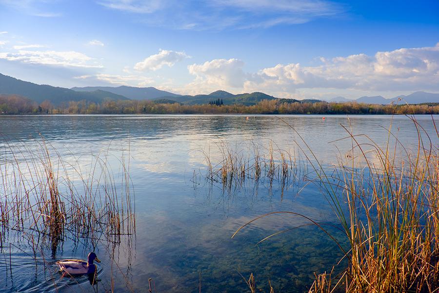 Lago de Banyoles, marzo 2016