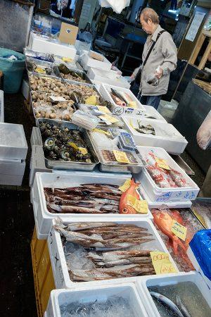 Mercado Tsukikji, Tokio marzo 2017