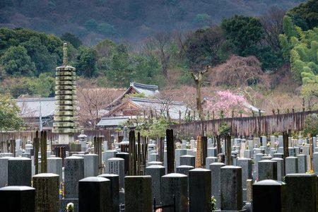 Cementerio, Arashiyama abril 2017