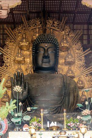 Nara, Buda de Todaiji, abril 2017