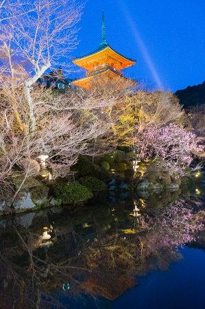 Noche en Kiyomizu-dera, Kioto abril 2017