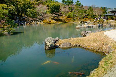 Jardín Zen Tenyru-ji abril 2017