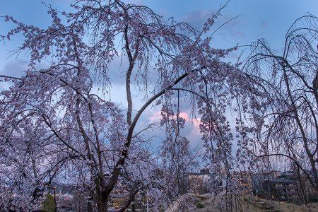 Kioto último atardecer, abril 2017