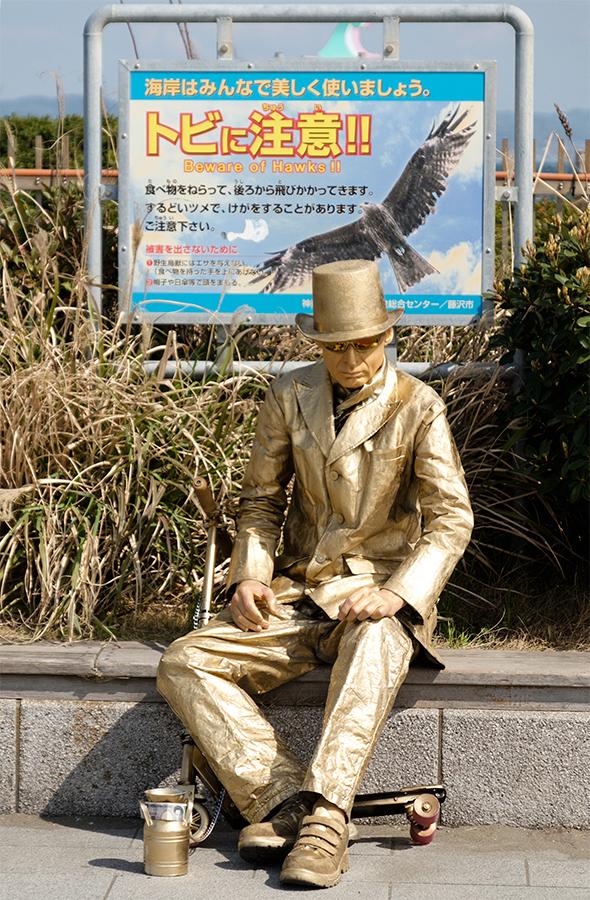 Cudiado con los halcones, Enoshima abril 2017