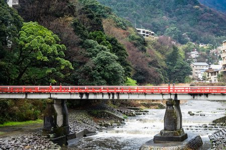 Hakone abril 2017