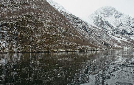 Fiordo, marzo 2020
