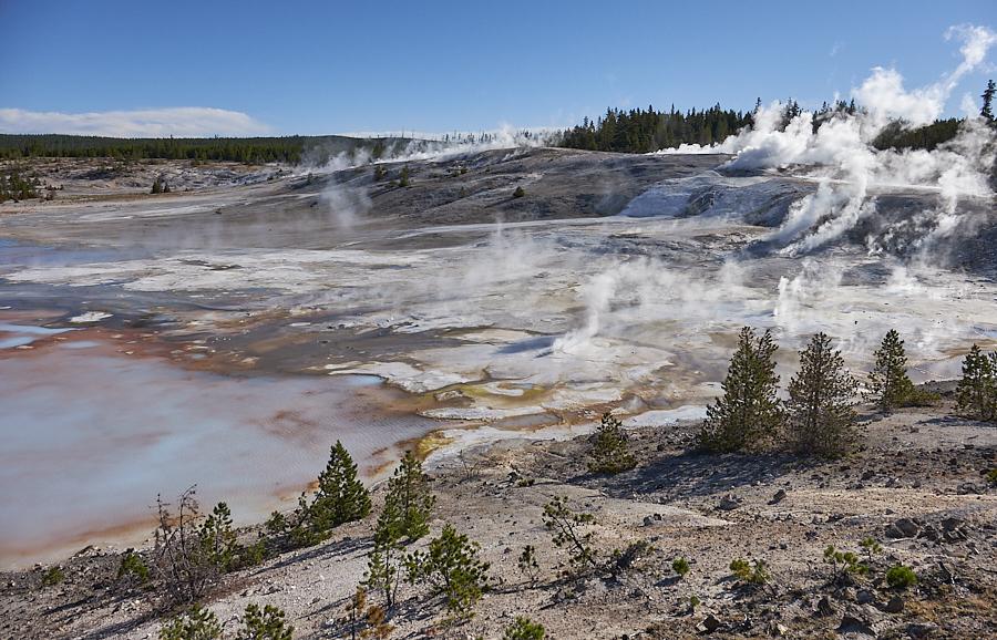Yellowstone, junio 2016