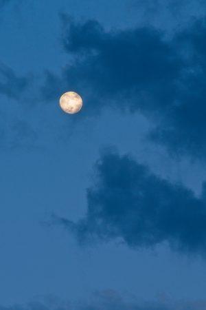 Luna casi llena, 3 de junio de 2020