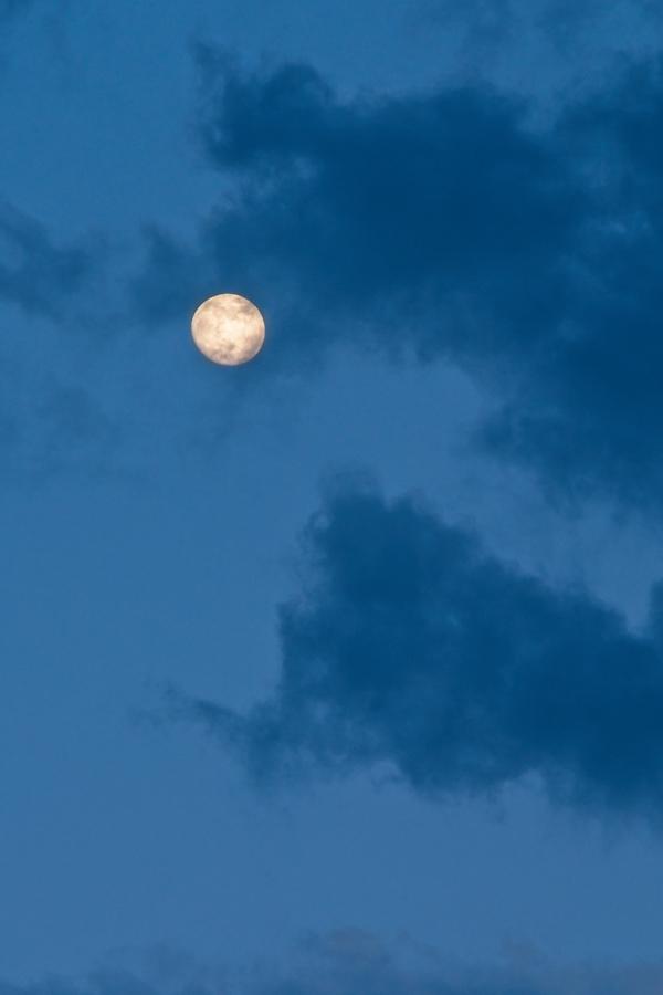 Luna casi llena, junio 2020